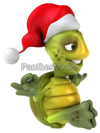fun, turtle - 28218139