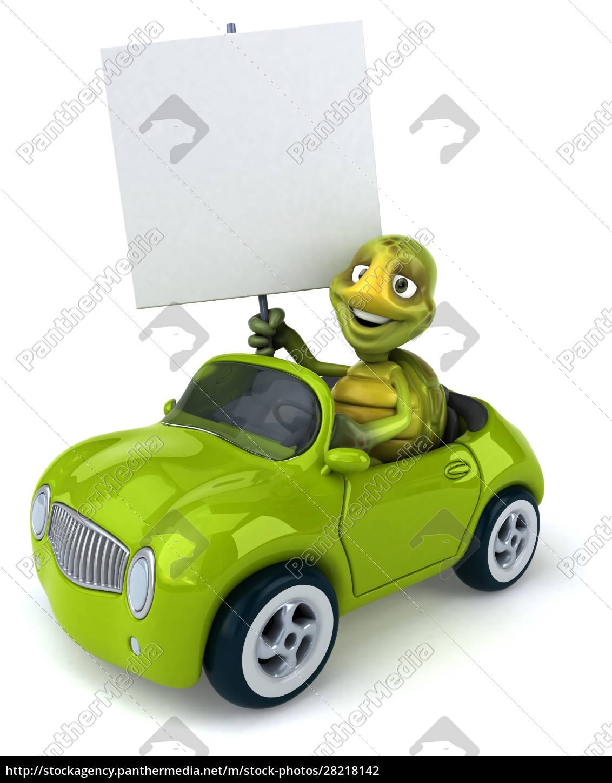 fun, turtle - 28218142