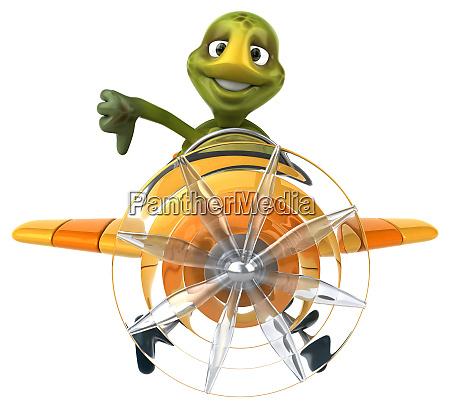 fun, turtle - 28218152