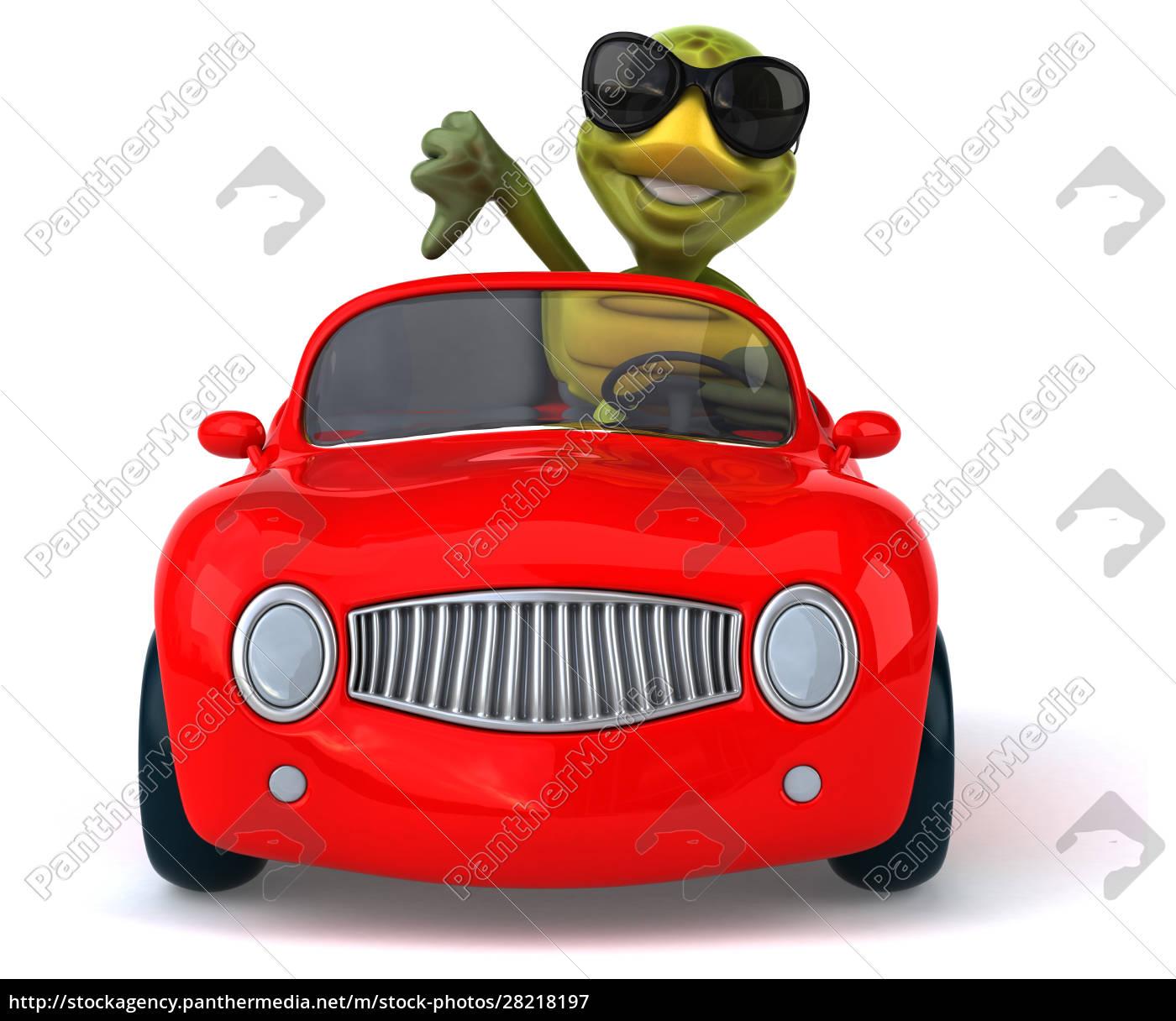 fun, turtle - 28218197