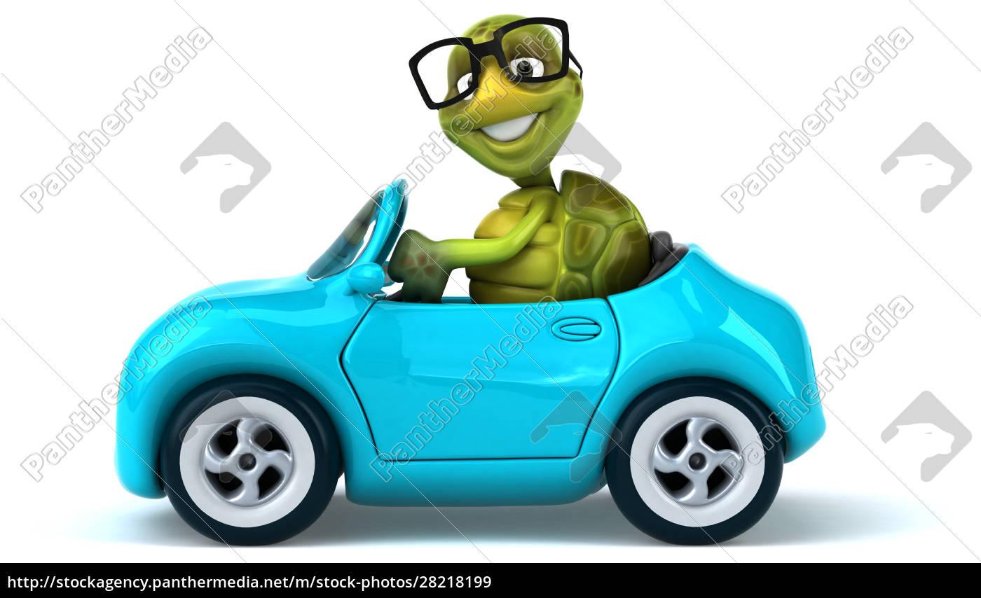 fun, turtle - 28218199