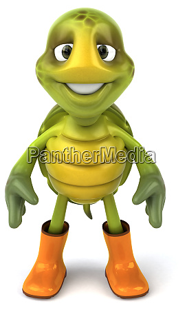 fun, turtle - 28218205
