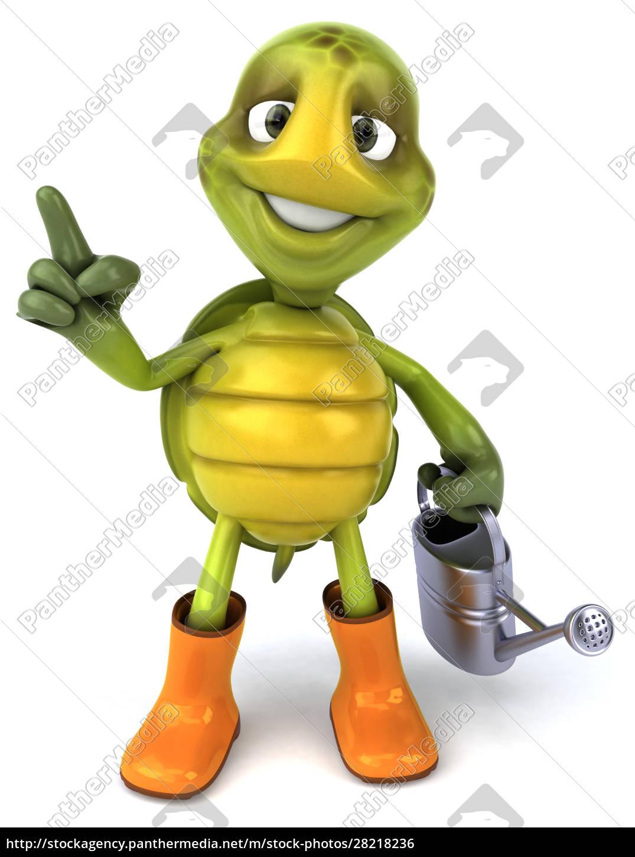 fun, turtle - 28218236