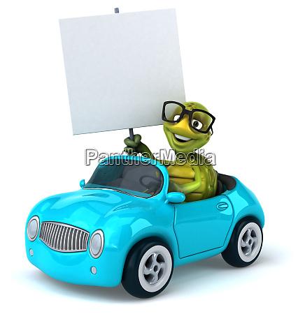 fun, turtle - 28218246