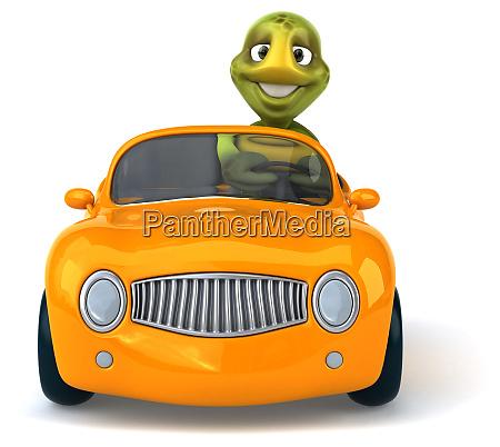fun, turtle - 28218250
