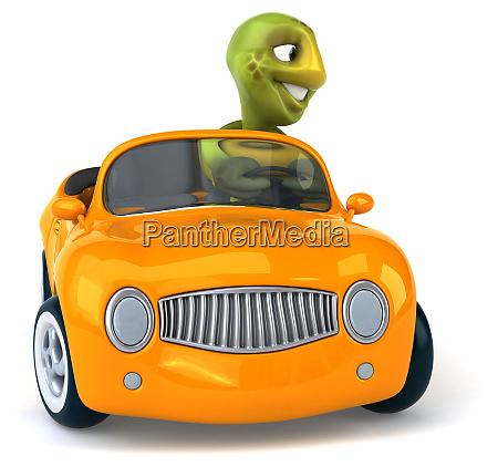 fun, turtle - 28218251