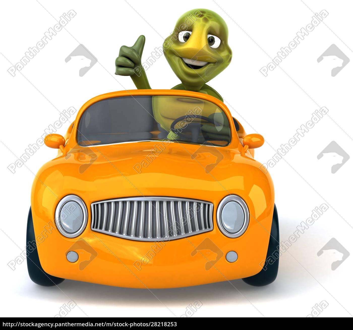 fun, turtle - 28218253