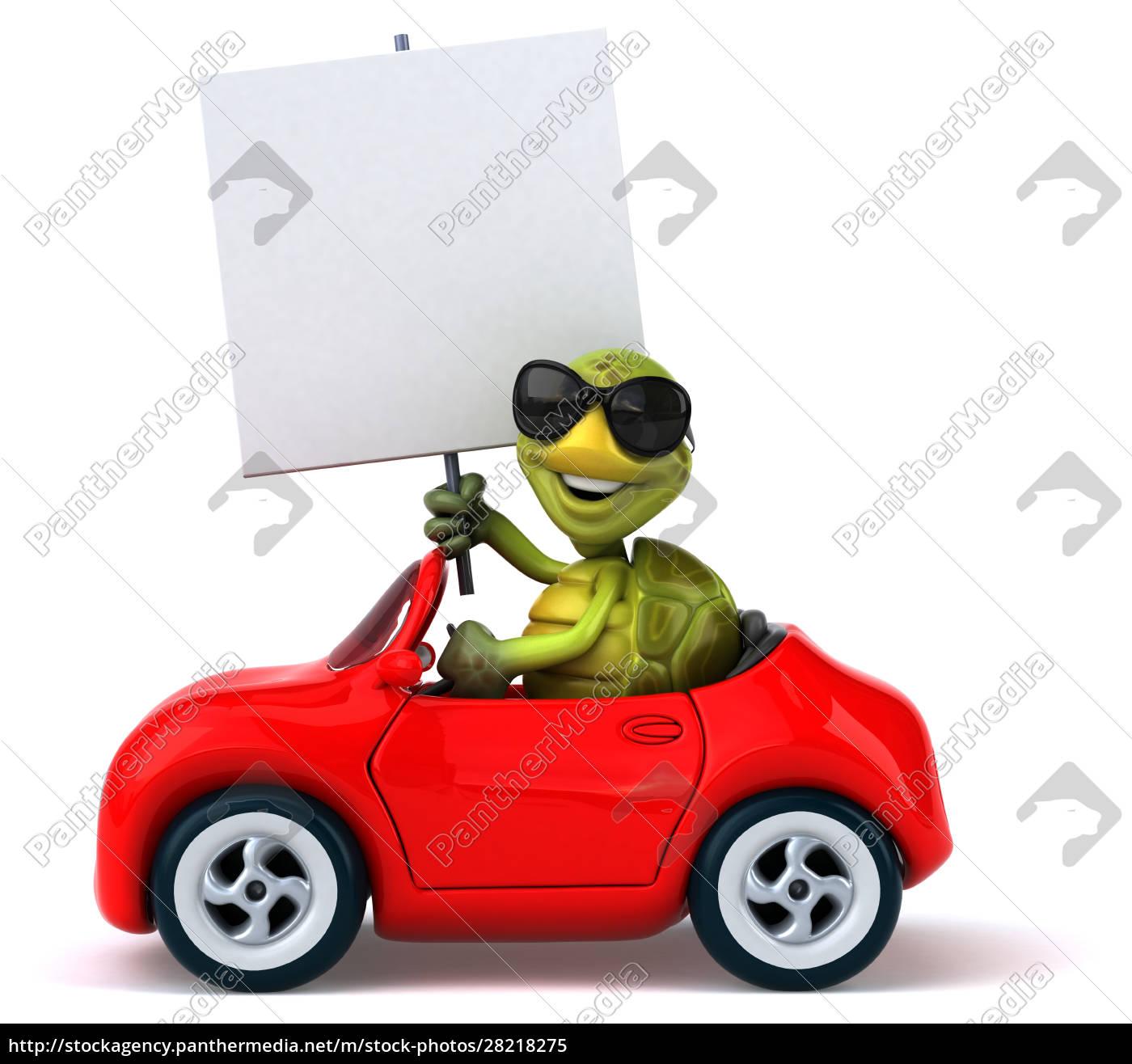 fun, turtle - 28218275