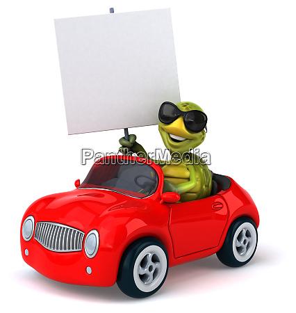 fun, turtle - 28218280