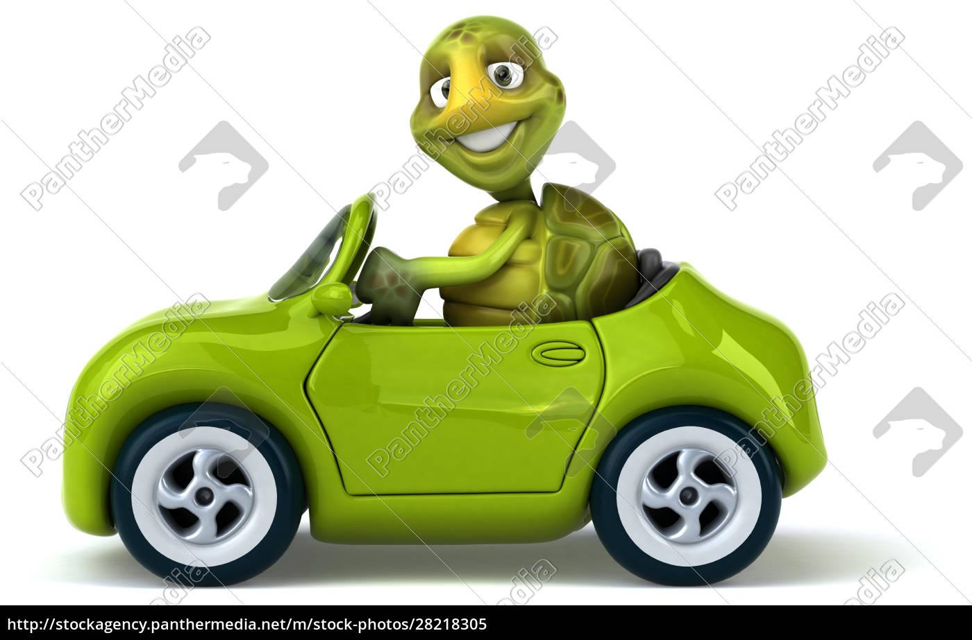fun, turtle - 28218305