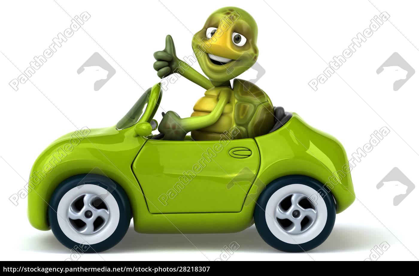 fun, turtle - 28218307
