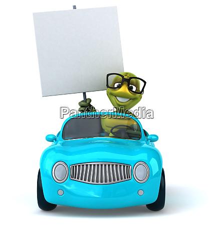 fun, turtle - 28218326