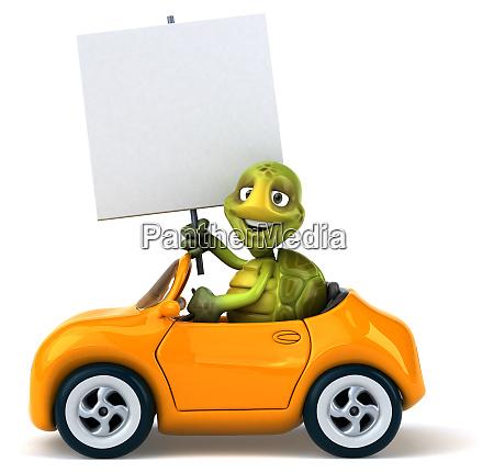 fun, turtle - 28218330