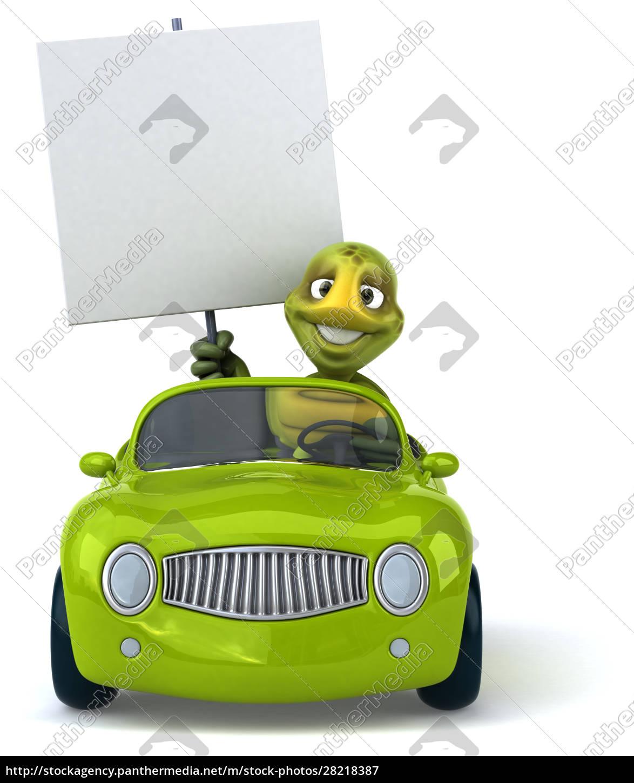 fun, turtle - 28218387
