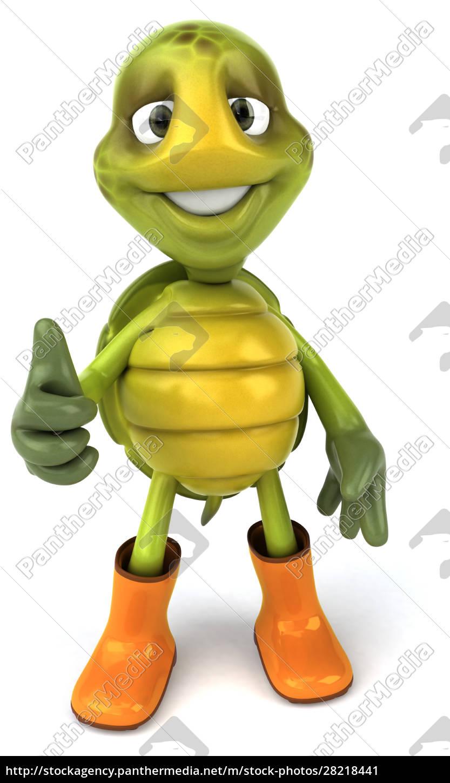 fun, turtle - 28218441
