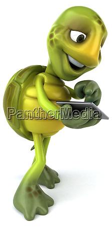 turtle - 28218006