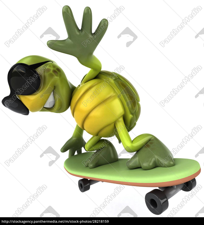 turtle - 28218159