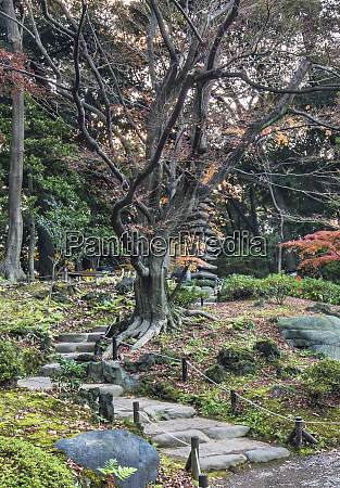 tokyo metropolitan park kyufurukawa japanese gardens