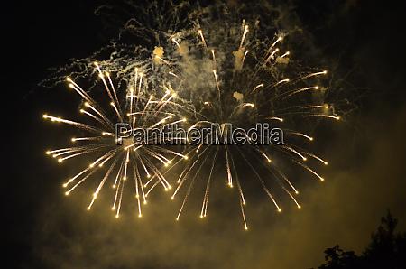 white firework fired in versailles