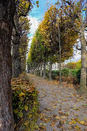 autumn in paris garden at