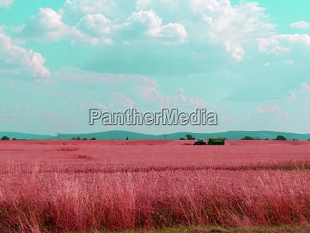 colourful field with farmer and machinery