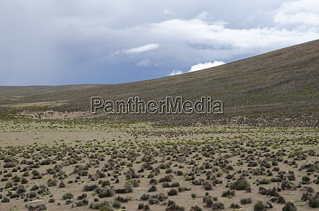 plateau and hill in lauca national
