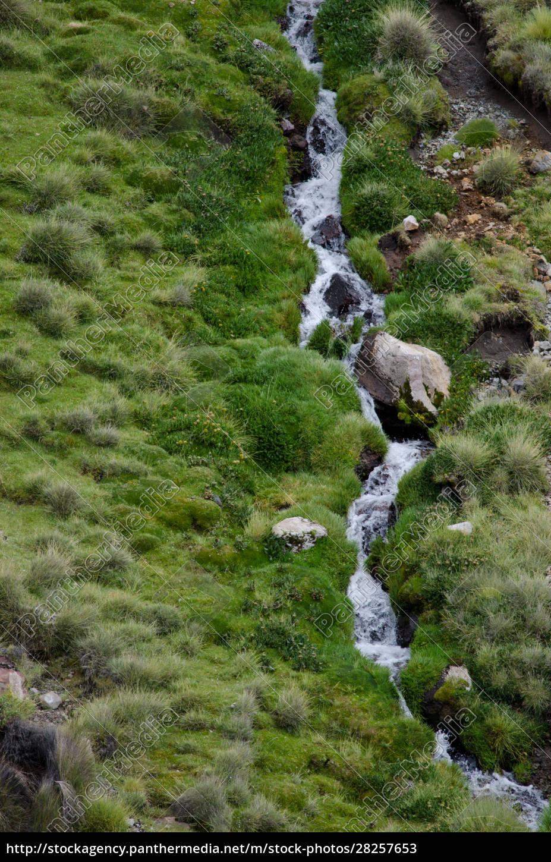 stream, in, a, green, meadow, in - 28257653