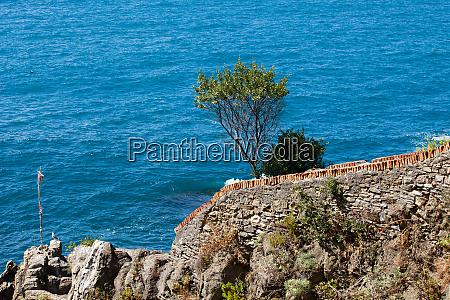 cliffs, in, riomaggiore., , cinque, terre, - 28258151