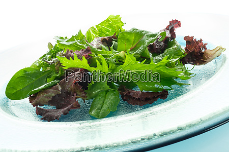 different, lettuce, with, dressing, on, a - 28258643