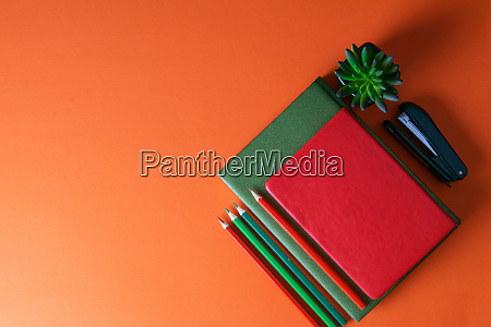 red, and, green, notebooks, stand, on - 28258196