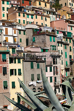 riomaggiore, -, one, of, the, cities - 28258027