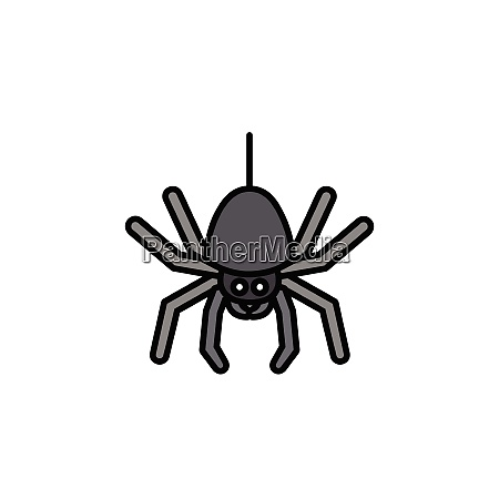 spider., filled, color, icon., animal, vector - 28258325
