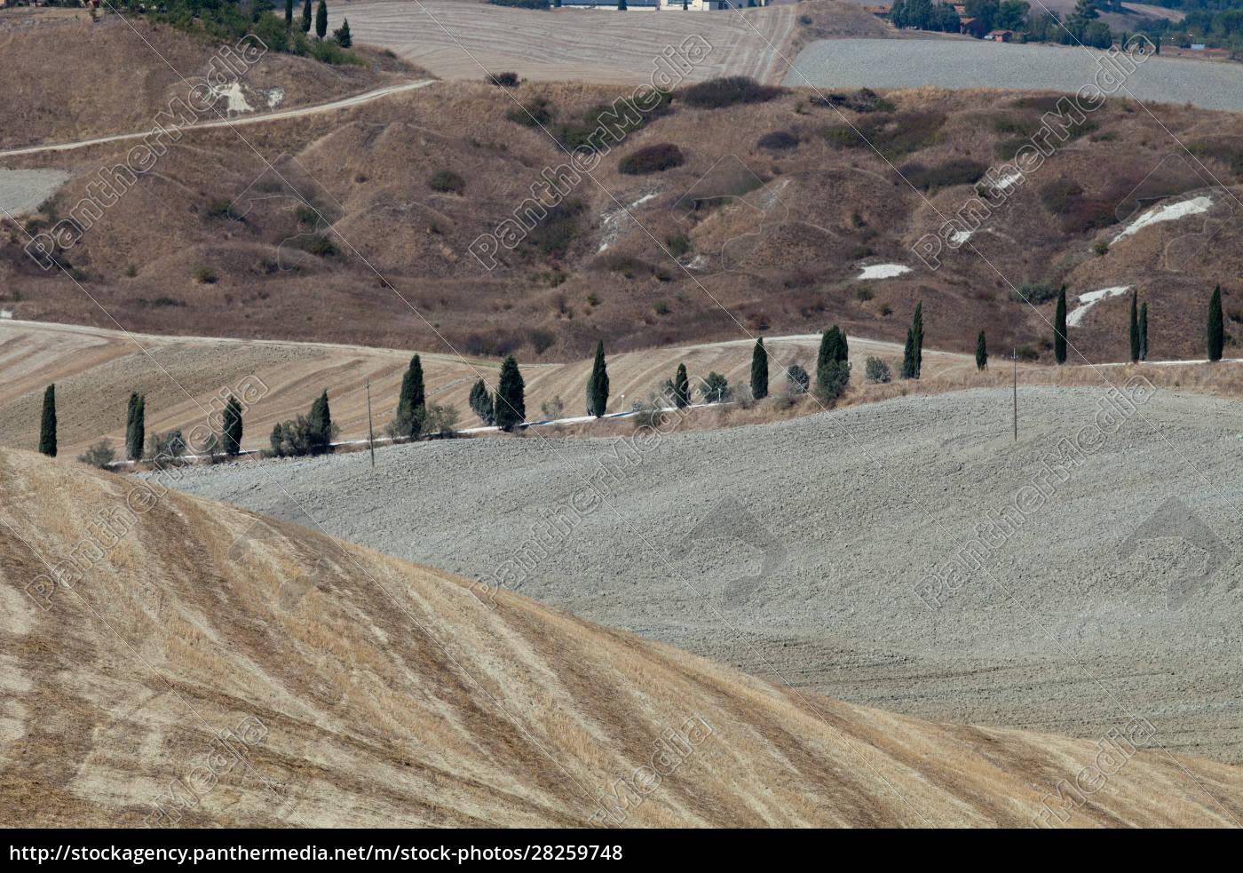 crete, senesi - 28259748