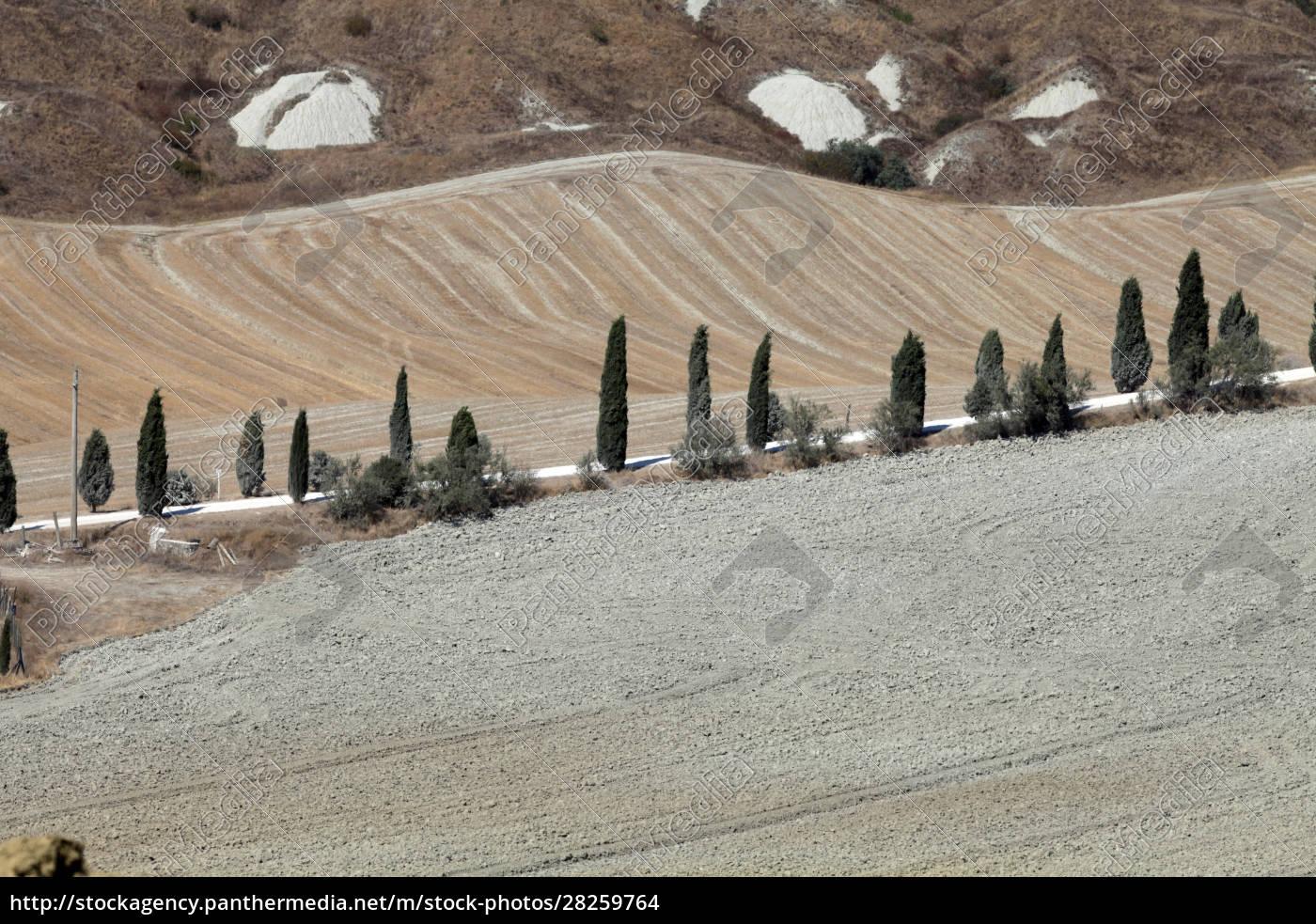 crete, senesi - 28259764