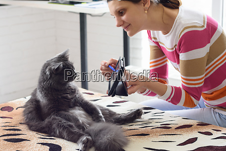 girl, shows, the, cat, sitting, on - 28259167
