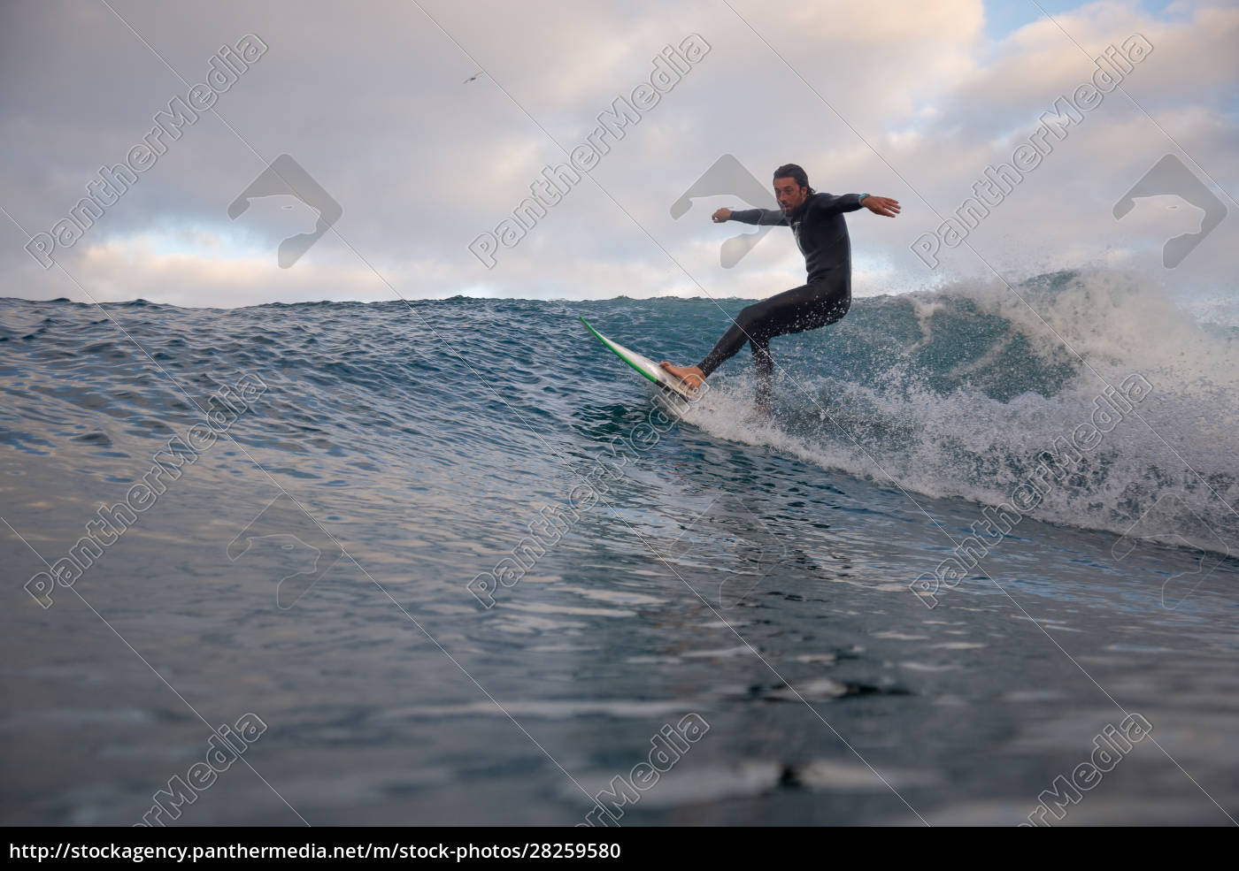 surfer, riding, waves, on, the, island - 28259580