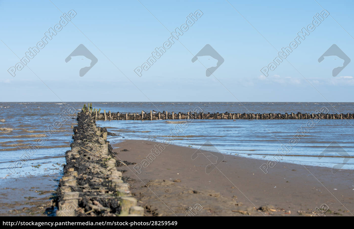 wadden, sea, national, park - 28259549