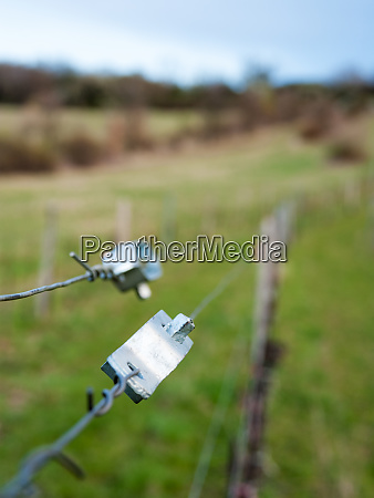wire, at, a, vineyard, in, burgenland - 28259367