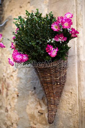 bouquet of purple petunias