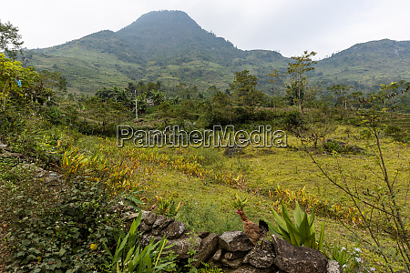 the landscape around sapa in vietnam