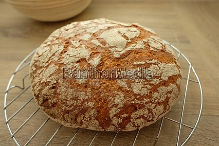 fresh rye bread with crust