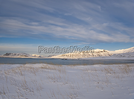 a snowy meadow on the coast