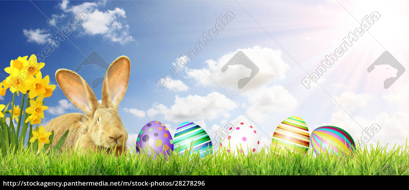 beautiful, easter, background, with, colorful, easter - 28278296