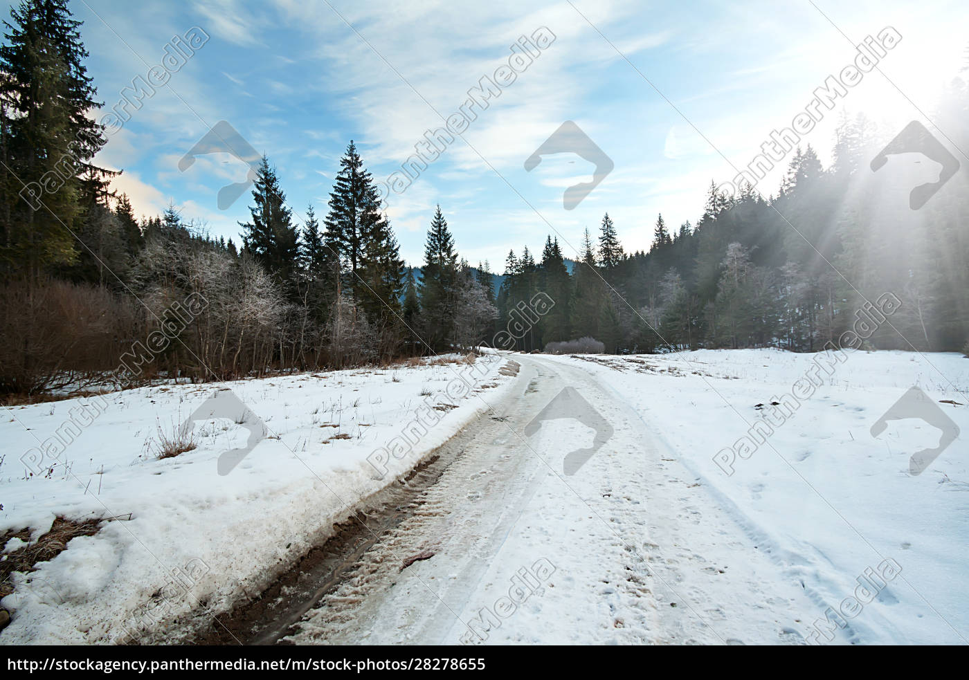 carriageway, road, in, the, winter, forest - 28278655