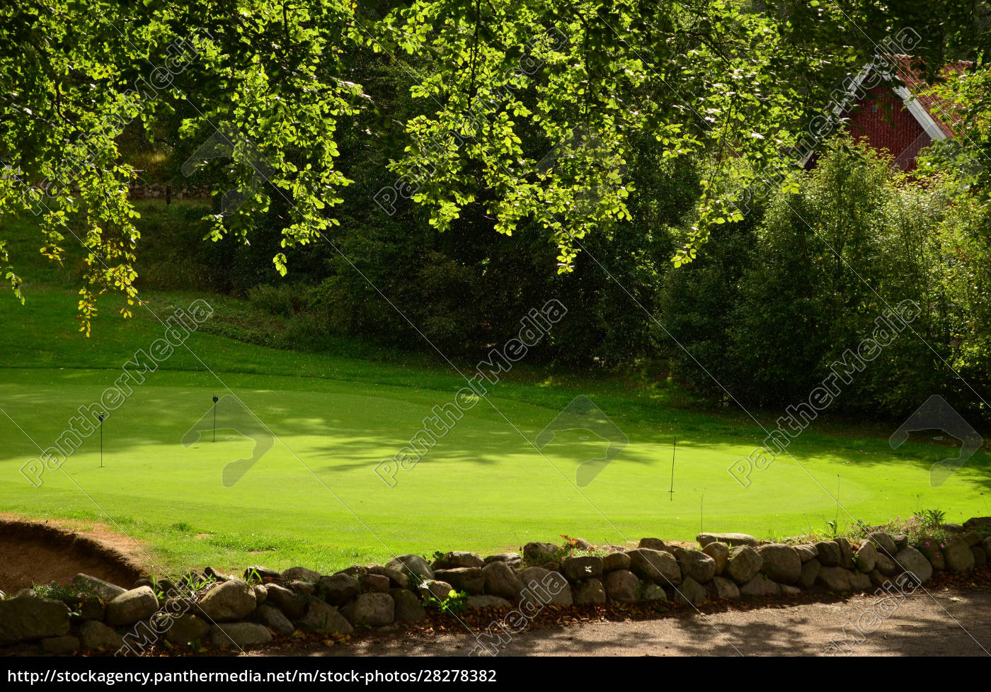 grassy, lawn, prepared, for, golf, in - 28278382