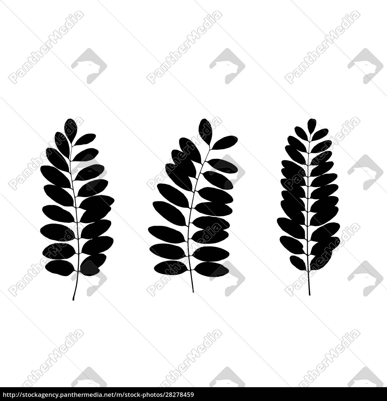 set, of, black, tree, leaf, silhouettes. - 28278459