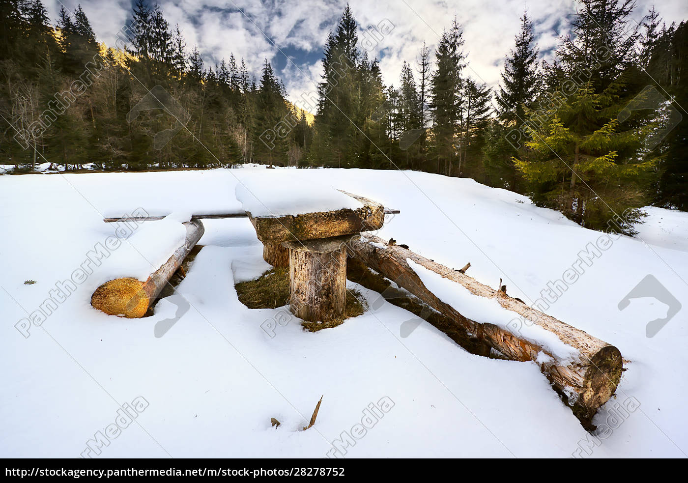 wooden, table, and, benches, in, a - 28278752