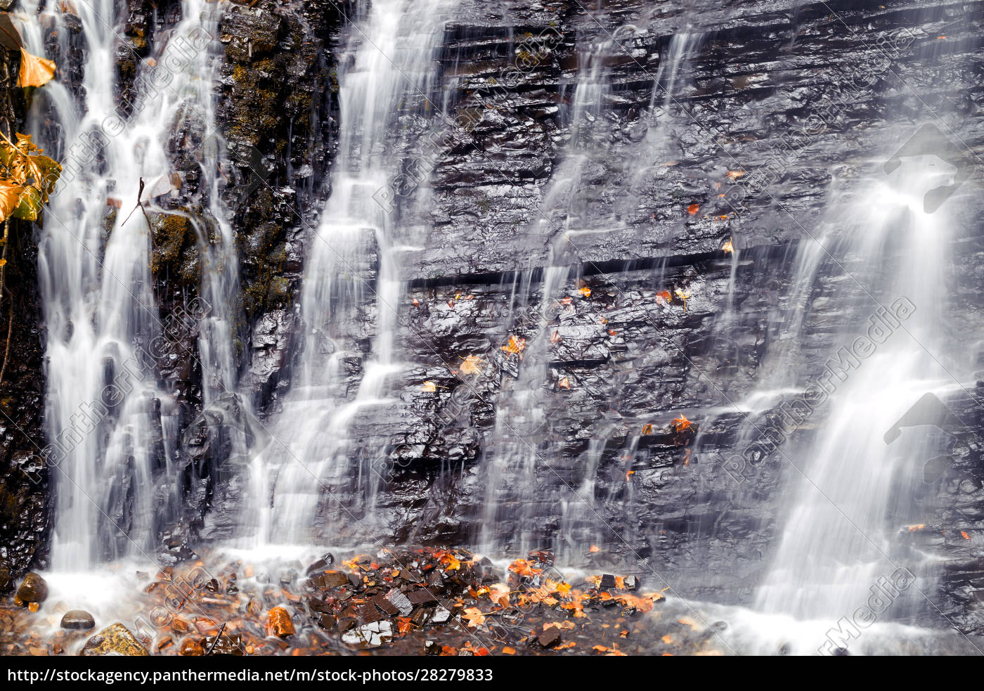 detail, of, waterfall, with, autumn, leaves - 28279833