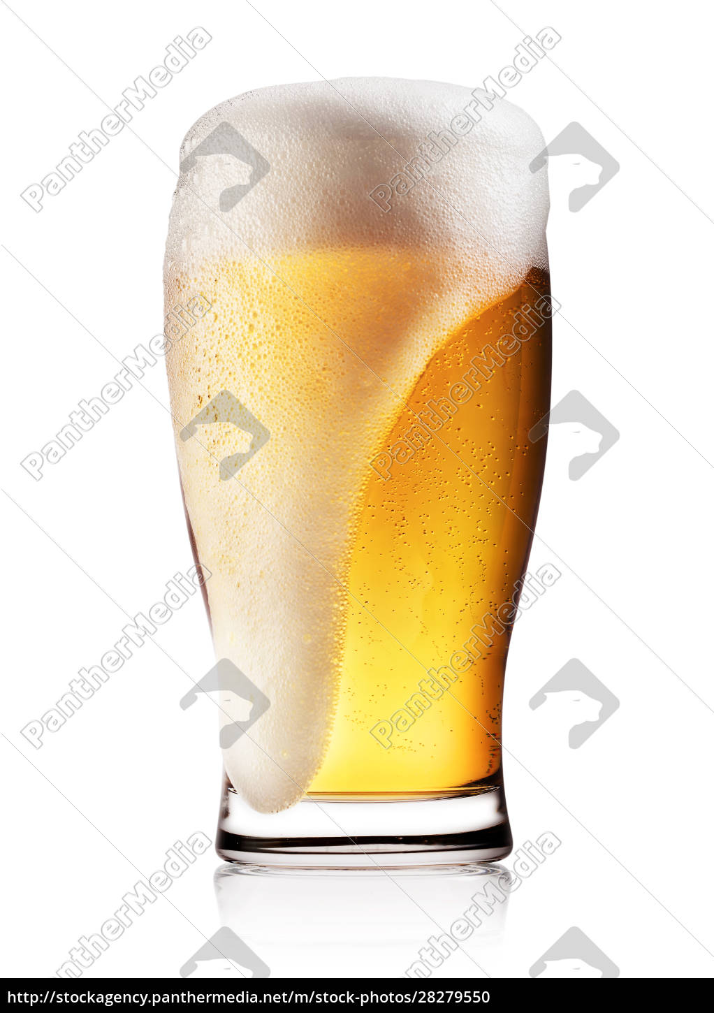 glass, of, light, beer, with, white - 28279550