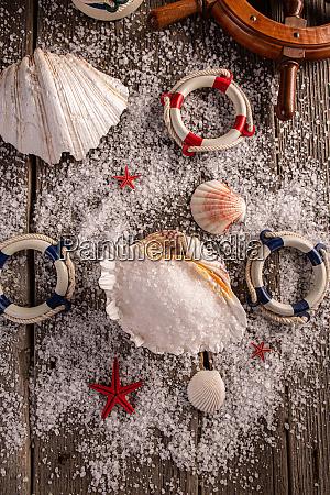 sea, salt, in, sea, shell - 28279148